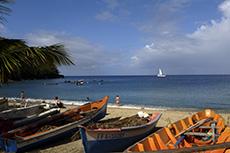 Best Martinique S Excursions & Tour Reviews - Cruise Critic