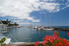 Maui City Tour