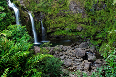 Maui Iao Valley cruise excursion
