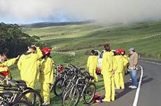Maui Bike Tour cruise excursion