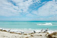 Miami Beach Break cruise excursion