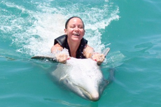 Montego Bay Dolphin Encounter