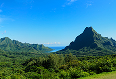 Moorea Belvedere Lookout cruise excursion