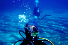 Nassau Scuba Diving cruise excursion