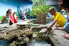 Noumea Noumea Aquarium