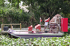 Orlando (Port Canaveral) Airboat Tour cruise excursion