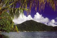 Pago Pago Island Tour cruise excursion