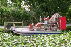 Port Canaveral (Orlando) Airboat Tour