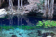 Progreso Biking & Cenote Tour