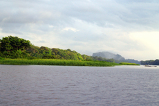 Puerto Limon The Tortuguero Canals cruise excursion