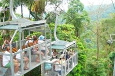 Puerto Limon Rainforest Aerial Tram Tour cruise excursion