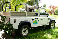 Raiatea 4WD Excursion cruise excursion