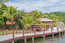 Roatan Island Tour