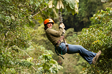 Roatan Zipline Adventure cruise excursion