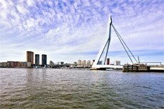 Rotterdam City Tour cruise excursion
