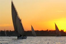 Safaga Felucca Tour cruise excursion