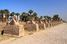 Safaga Luxor Walking Tour