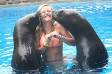 Samana and Cayo Levantado Sea Lion Encounter