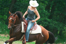 Skagway Horseback Riding cruise excursion