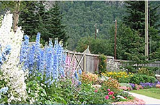 Skagway Jewell Gardens Lunch