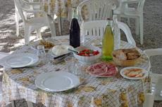 Sorrento Farm Visit cruise excursion