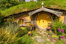 Tauranga Hobbiton Movie Set