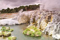Tauranga Geothermal Springs