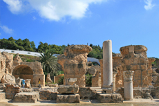 Tunis (La Goulette) Carthage Walking Tour