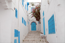 Tunis (La Goulette) Private Tour cruise excursion