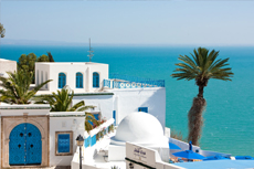 Tunis (La Goulette) Sidi Bou Said Walking Tour cruise excursion