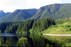 Vancouver Capilano Canyon  cruise excursion