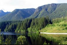 Vancouver Capilano Canyon