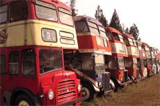 Victoria Double Decker Bus Tour cruise excursion