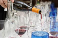 Vigo Wine Tasting